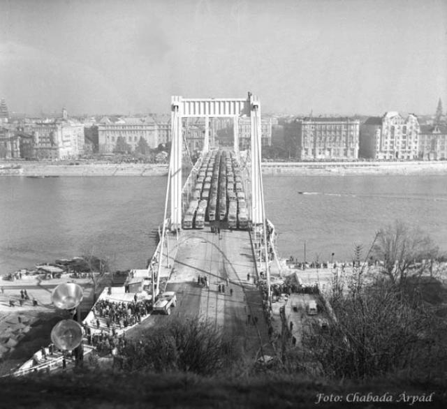 Erzsébet híd, Budapest